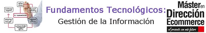 Gestion Informacion Ecommerce