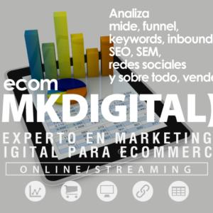 Curso Experto En Marketing Digital